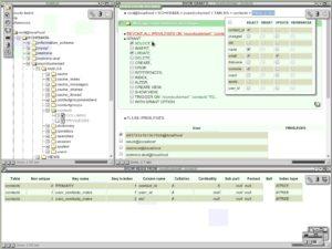 SQL Frogge - Privileges