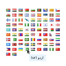 Google Translate - Flags